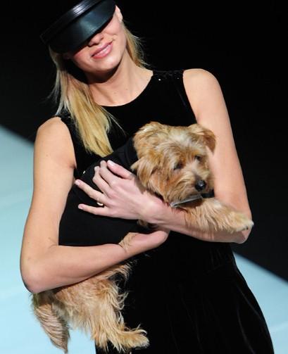 Doggy style @ Emporio Armani