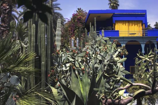 Jardin Majorelle   The Blue Mirage