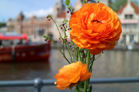 A different view on Amsterdam with the Canon EOS M3