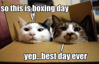 Boxing_day_fun