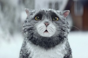These cute commercials just make us melt inside