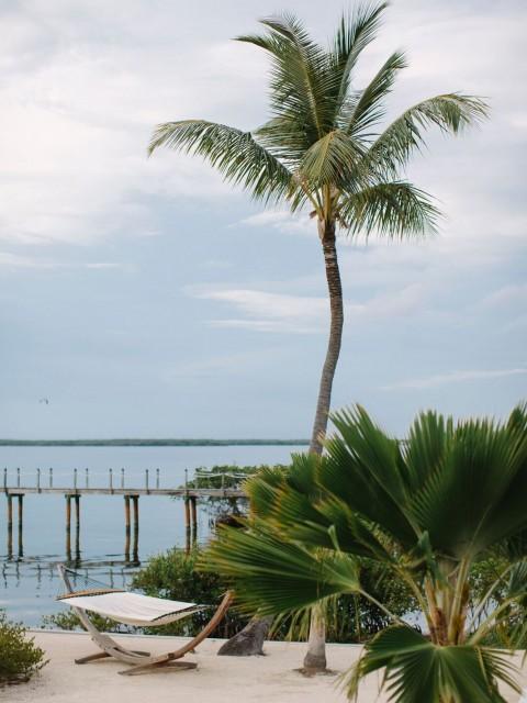 hammock-coconut-island