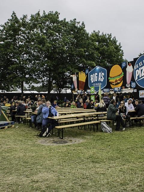 Roskilde Festival (10)