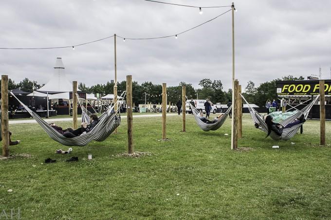 Roskilde Festival (6)